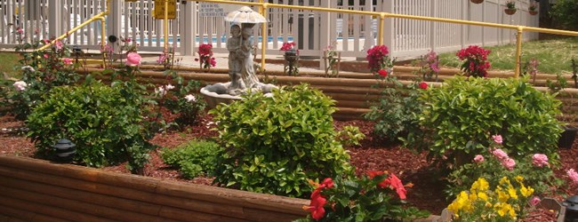 Flower Garden and Handicap Ramp @ Pool