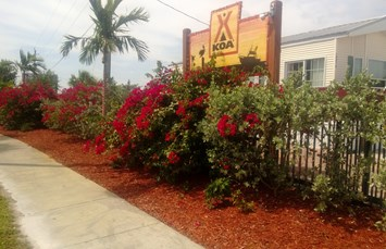 Fort Pierce / Port St. Lucie KOA Photo