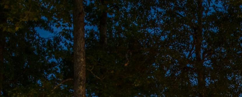 New Bern North Carolina Campground New Bern Koa