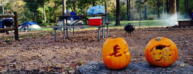 Pumpkins at campsites