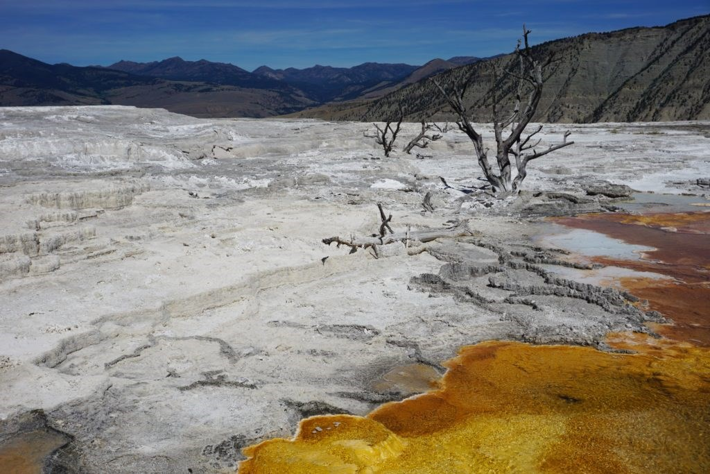 10 Things To Do Around Yellowstone National Park Koa
