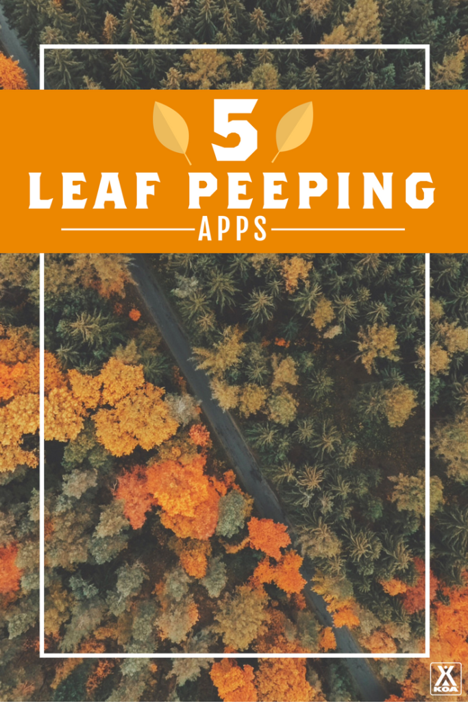 5 Leaf Peeping Apps - Download these apps to make the most of fall!
