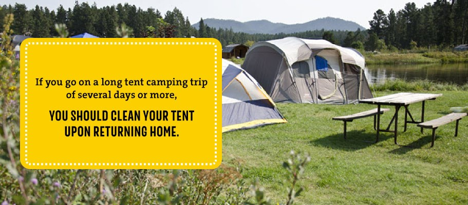 Clean your tent