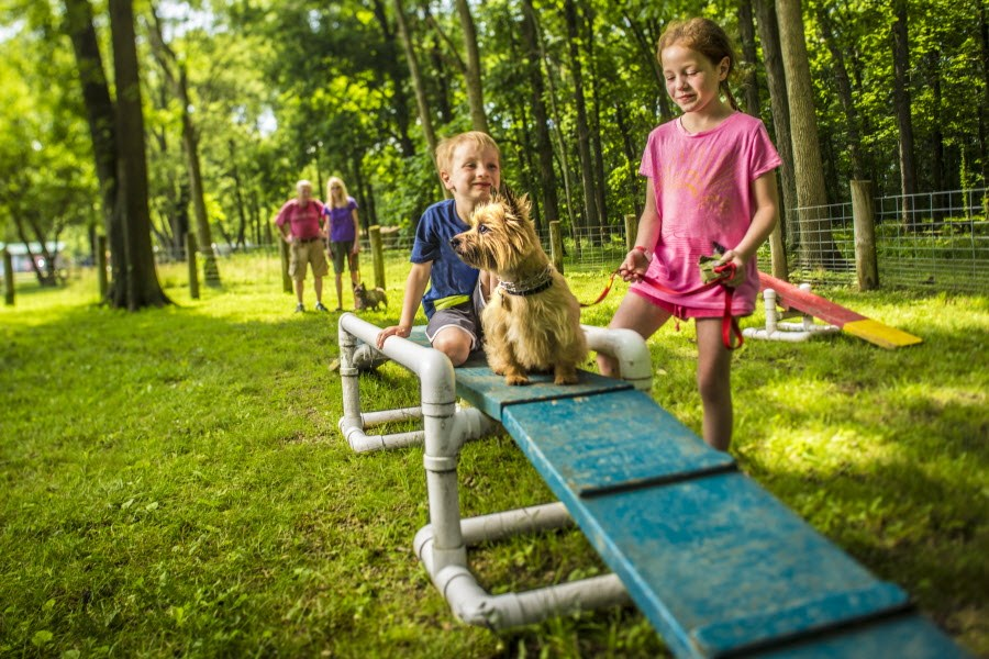 Stay at a dog friendly RV campground