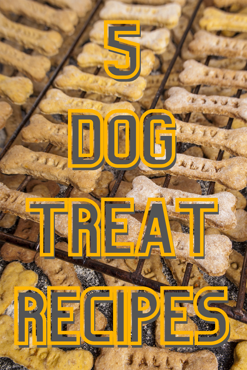 Make your four-legged friend jump for joy with these homemade dog treats. From frozen watermelon treats to peanut butter-banana treats, there's something for every pup!