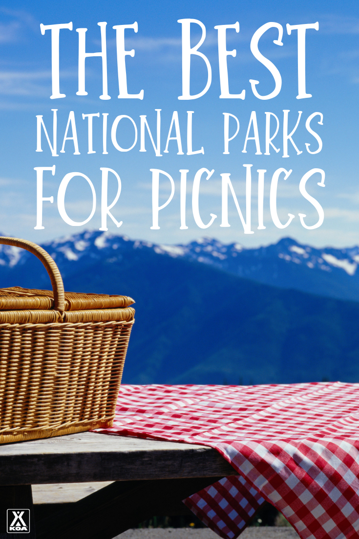 There are few spots better for picnics than our scenic national parks. From soaring mountains to pristine coast lines, these spots are perfect for a noshing in nature. If you're looking to do a little hike with a picnic basket in tow, here are some of the best national parks to visit this summer.