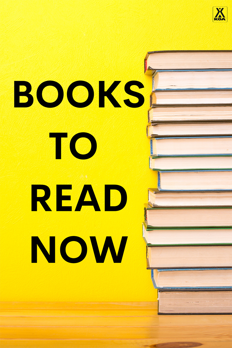 There's nothing like getting lost in a book! Here are some of the best reads of 2020 so far.