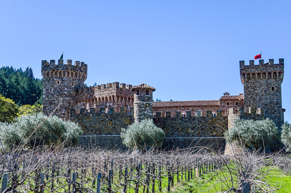 Castello Di Amorosa in California with grapevine rows
