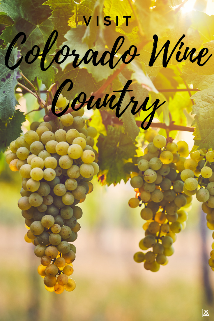 Take a trip to Colorado to experience this state's awe-inspiring wine region. Whether you're looking for adventure or just want to sit back and sip, Colorado wine country has something for everyone.