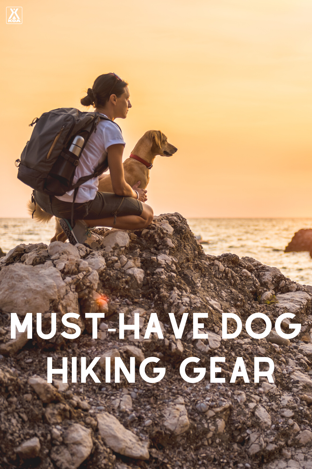 Before you hit the trail with your four-legged friend make sure that they have all the gear they need for a successful outing. Check out our dig hiking gear list here!