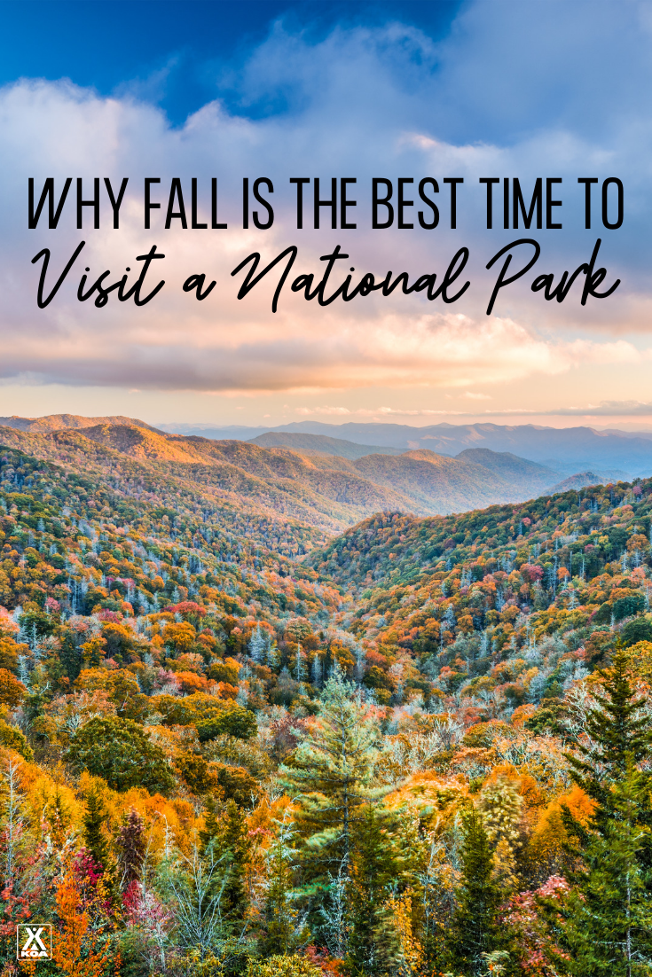 Many national parks experience their best weather window during the autumn months while offering better wildlife sightings, fewer crowds, and shoulder-season pricing. Here are our top reasons for taking a trip to a national park during the fall.