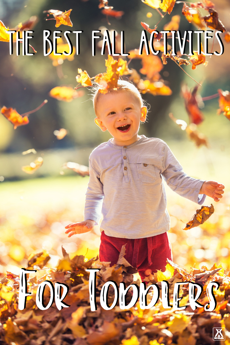 Looking for some ideas to get you and your toddler outdoors and exploring this fall? Check out these outdoor autumn activities for toddlers!