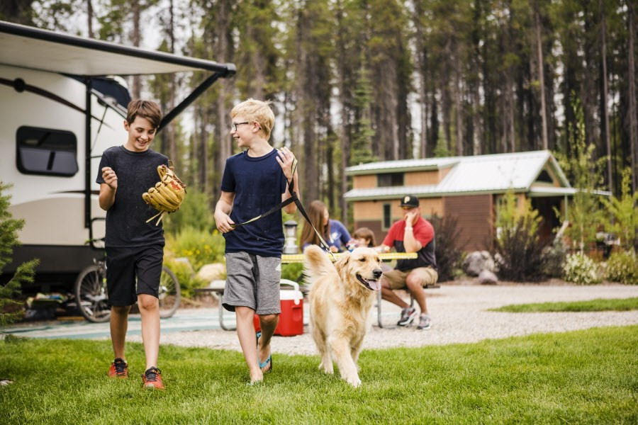 Plan a family camping trip