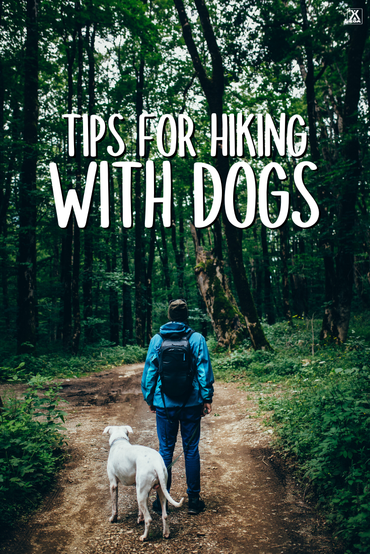 Hiking is a great way to get outdoors & bond with your four-legged friend. Check out our guide on trail etiquette for hiking with your dog & some great tips!