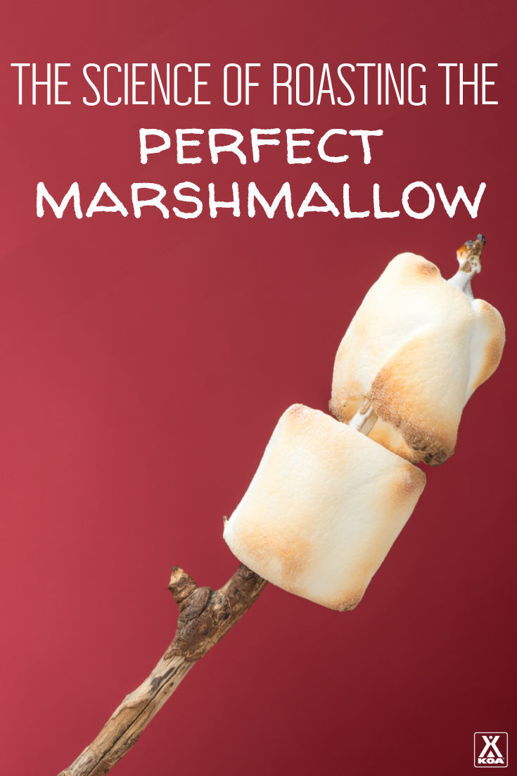 Roasting the perfect marshmallow is definitely a science where practice makes perfect. Follow our tips and tricks to ensure your marshmallow is perfectly roasted every time.