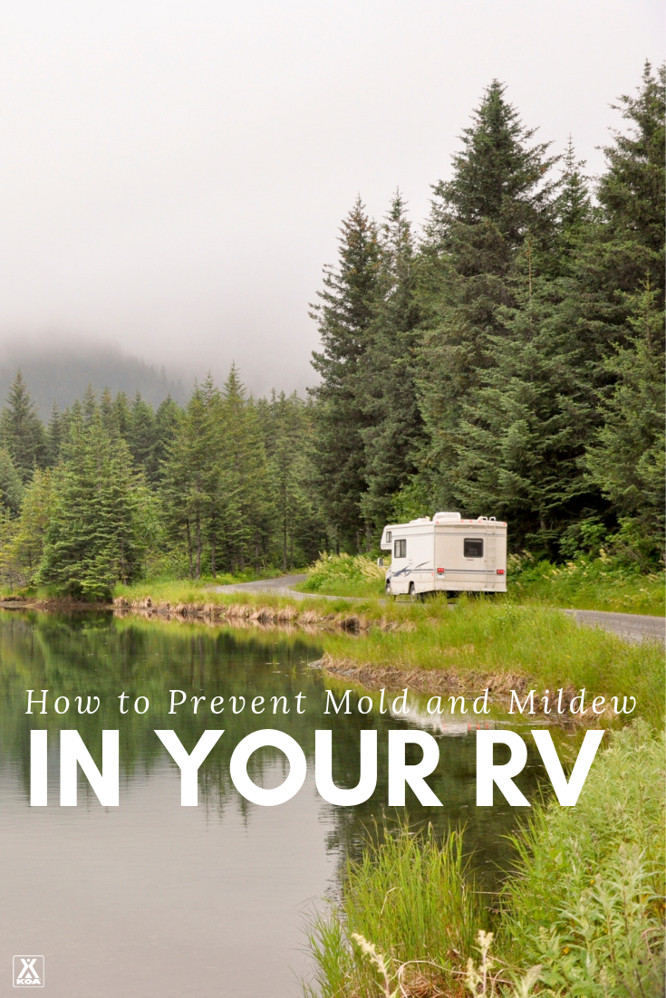 When it comes to mold, mildew and fungus in your RV, prevention is your best bet. Check out these 7 tips for preventing the growth of RV mold and mildew!