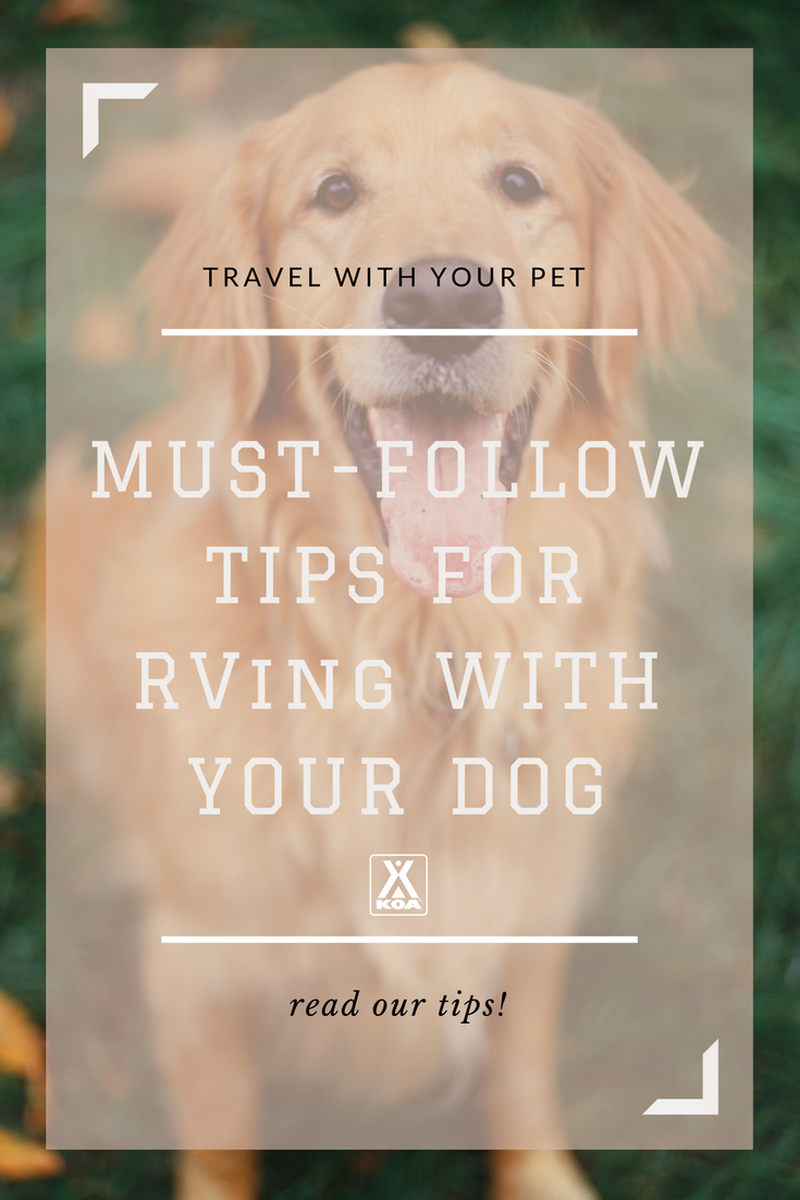 Don't stress RVing with your pet!