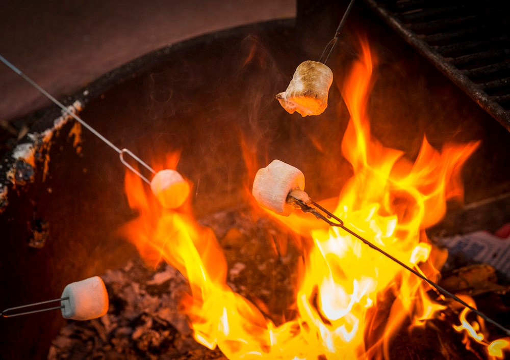 The Science of Roasting the Perfect Marshmallow | KOA Camping Blog