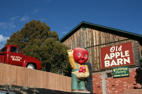 Old Apple Barn