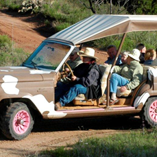 Elkins Ranch Jeep Tours