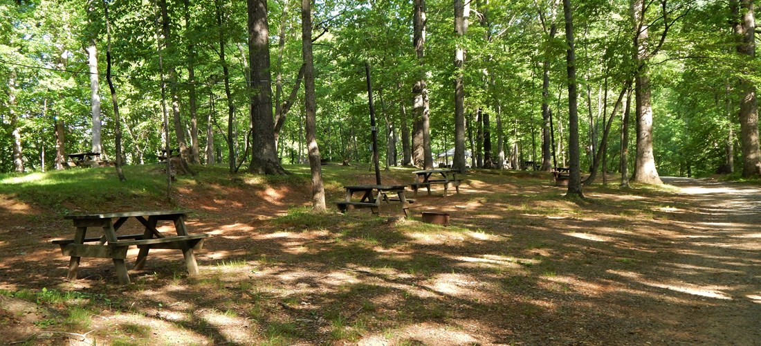 G Section, Tent Sites, No Hookups