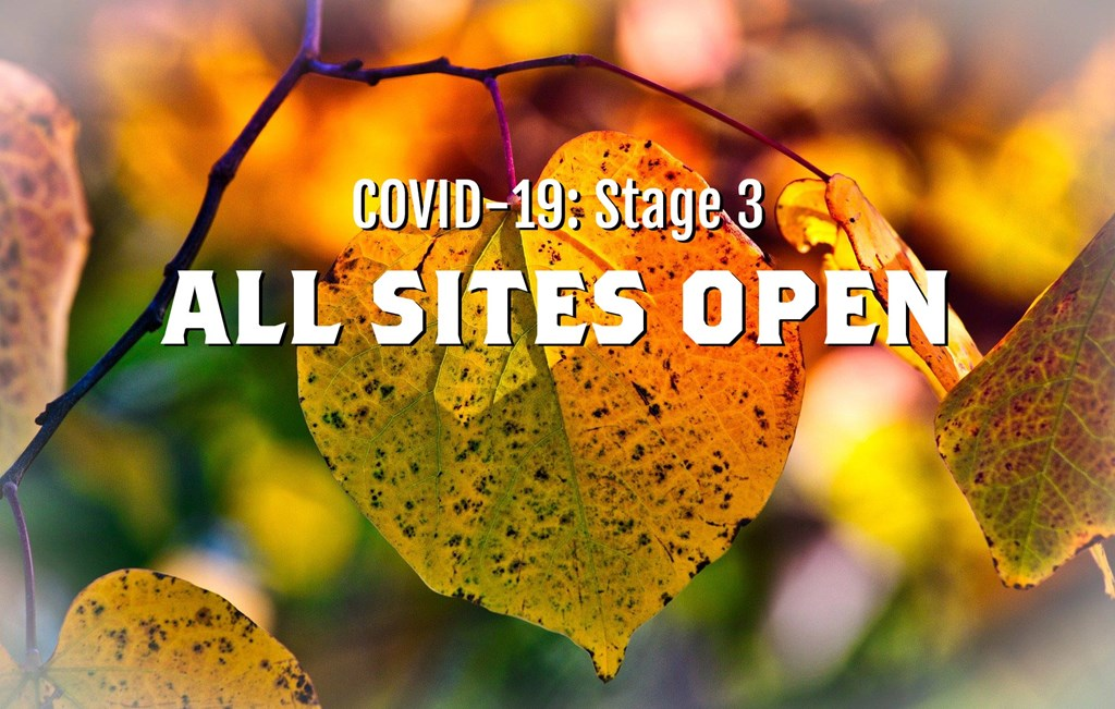 COVID-19 Phase 3: All Sites Open