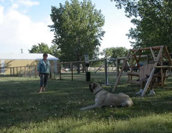 Our pet park is a big hit with our 4 legged kampers