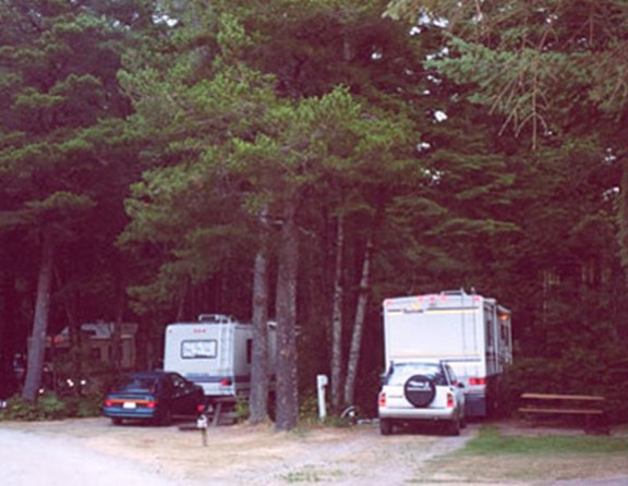 "80 foot long pull thru sites but still nestled in the trees.  Enjoy ""camping"" the way it USED to be (but with wifi, television, a pool, a hot tub, laundry....)"