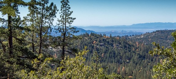 Banning, California Campground | Banning Stagecoach KOA