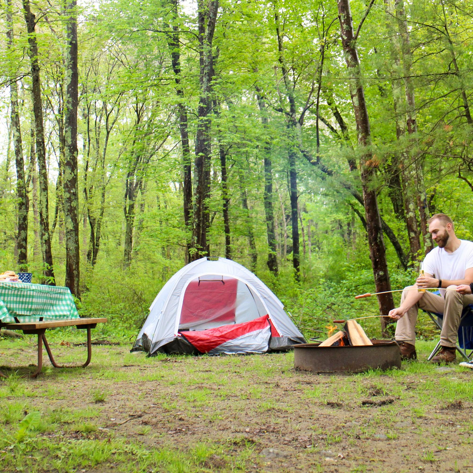 Middleboro Massachusetts Campground Boston Cape Cod Koa