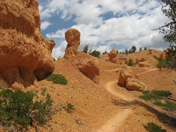 Red Canyon Mountain Biking