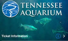Tennessee Aquarium - Chattanooga
