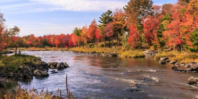 KOA's Guide For The Best Fall Foliage