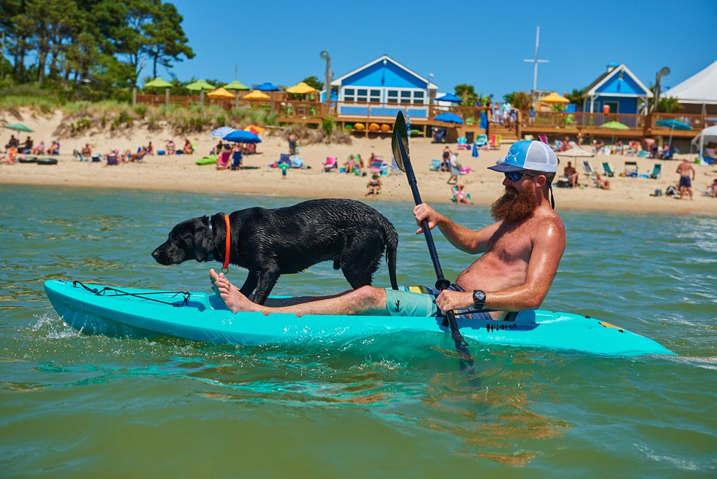 Fun for Your Pup at Chesapeake Bay KOA