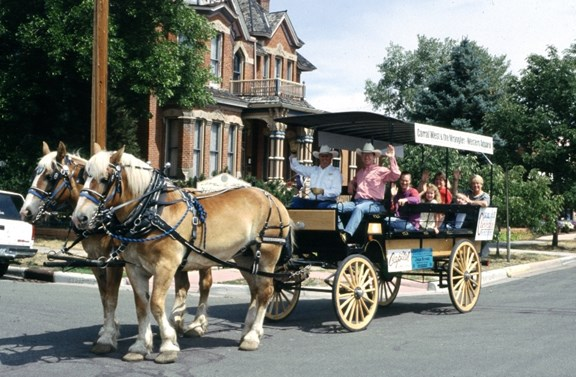 Horse Drawn Buggy Tours