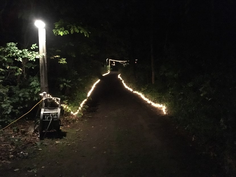 Lights Along the Path