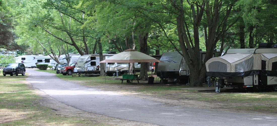 Paved roads and mature trees throughout campground
