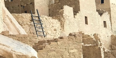 Cliff Palace Ranger Guided Tours