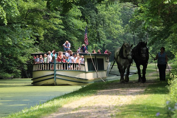 Horse-Drawn Canal Boat Ride