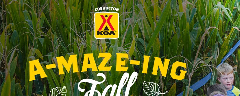 Get lost in our giant corn maze!