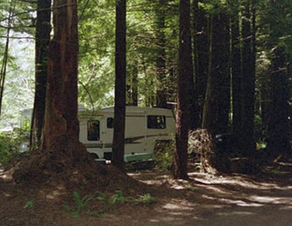 Smaller trailers and motor homes - up to 25 feet are welcome to stay in the water/electric sites in the forest.