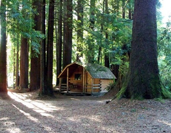 Another one of the peaceful 1-room cabins in the forest.