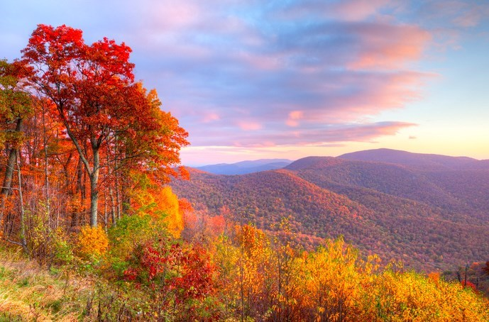 Why Fall Is The Best Time To Plan A National Park Road Trip