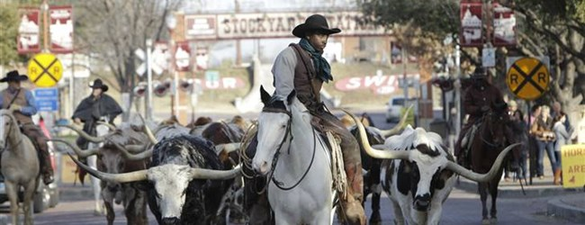 Ft. Worth Stock Yards and Cattle Drive