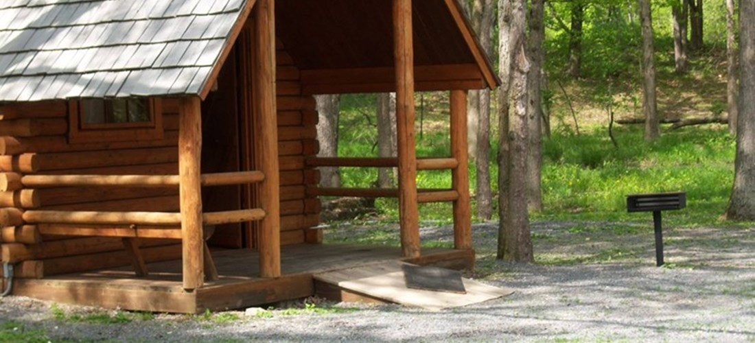 Pet-friendly rustic cabins