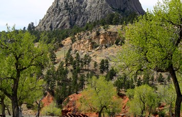 Devils Tower / Black Hills KOA Photo
