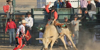 Dubois Friday Night Rodeos