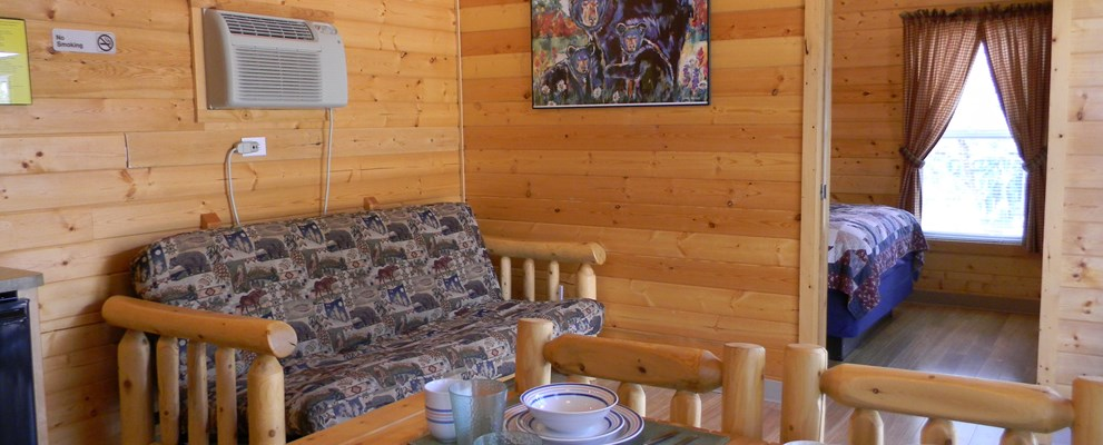 The inside view of our Handicap Accessible Lodge that sleeps up to 4 people. Includes one bedroom with a Queen bed, 1 Full Futon, a Full Bath with a handicapped shower, TV, A/C & Heat control, and a Partial Kitchen. Don't forget your own linens!