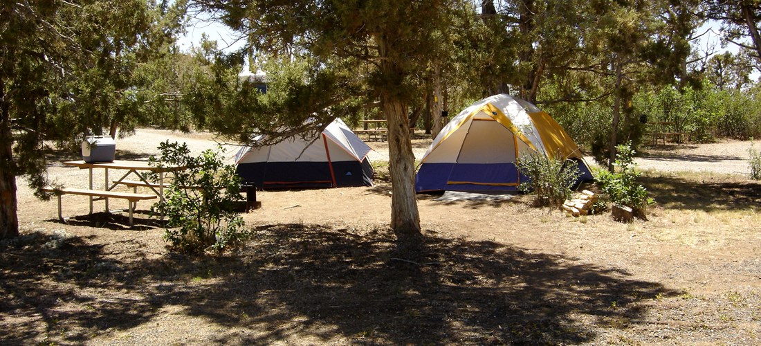 A few of our tent sites are large enough to accommodate more than one small tent, for families! Make sure to tell us the size of your tent when booking!