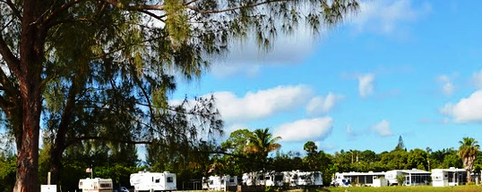 St James City Florida Campground Fort Myers Pine